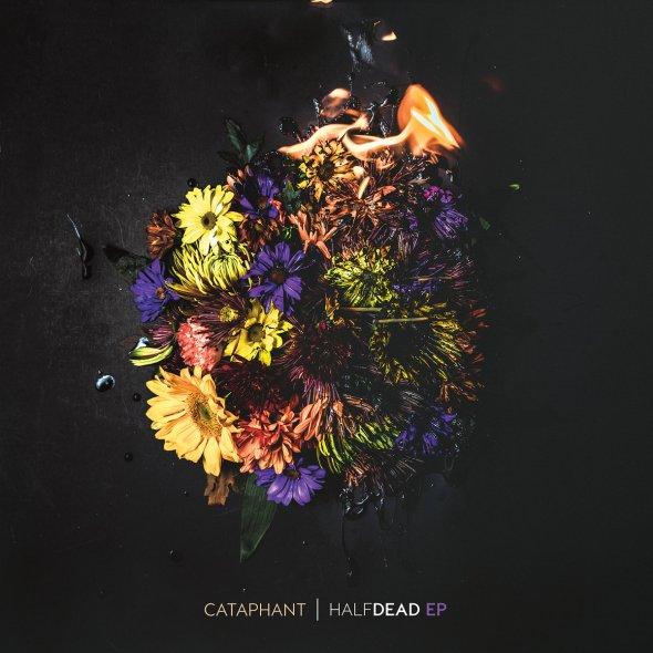 cataphant half dead